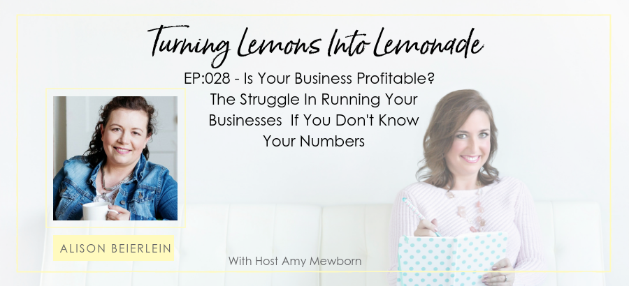 EP:028-Guest Alison Beierlein-Turning Lemons Into Lemonade Podcast with Amy Mewborn